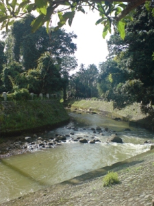 Ciliwung river inside the Botanical Garden
