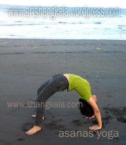 asanas yoga1