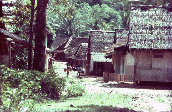 Download this Rumah Kanekes Baduy picture